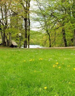 Plitvice-green-meadow-rest-stop
