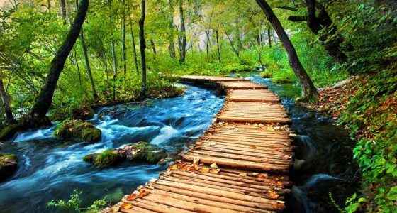 trail-through-the-forrest-plitvice-tour-omis